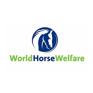 WorldHorseWelfare