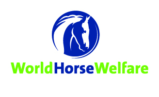 World Horse Welfare to be Charity of the Year 2016